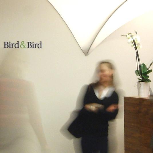 twobirds-ico534